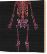 The Skeleton Wood Print