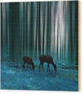 2737 Wood Print