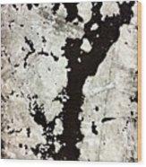Post 2 Wood Print