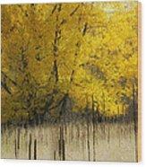 2804 Wood Print