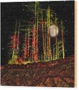 2806 Wood Print