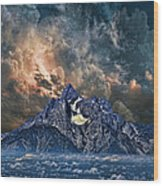 2854 Wood Print