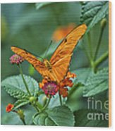 3 2 1 Prepare For Butterfly Liftoff Wood Print