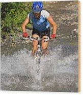 A Woman Mountain Bikes Along Trail 401 Wood Print