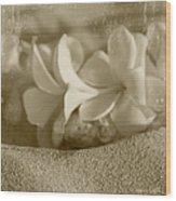 Aloha'lani Pua Melia Lei Manakai Wood Print
