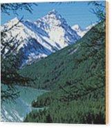 Altai Mountains Wood Print