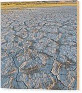 Alvord Desert, Oregon Wood Print