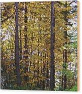 Autumn 5 Wood Print