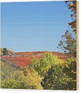 Autumn Colors In Maine Blueberry Field And Forest Wood Print