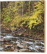 Autumn Elk River Wood Print