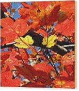 Autumn Leaves Wood Print