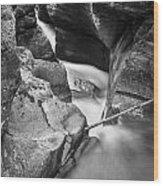 Avalanche Gorge Glacier National Park  Bw  Wood Print