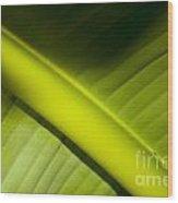 Banana Leaf Wood Print