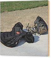 Baseball Glove And Chest Protector Wood Print