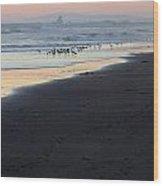 Beach Sunset Ormond Beach Wood Print