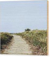 Beach Trail Wood Print