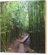 Boardwalk Passing Through Bamboo Trees Wood Print