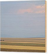 Boulder County Colorado Open Space Country View  Wood Print by James BO  Insogna