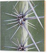 Cactus Thorns Wood Print
