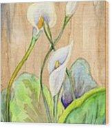 3 Calla Lilies Wood Print
