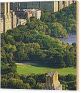 Central Park Wood Print by Brian Jannsen