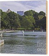 Central Park Pond Wood Print