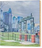 Charlotte Ballpark Wood Print