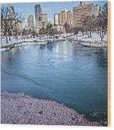 Charlotte North Carolina Marshall Park In Winter Wood Print