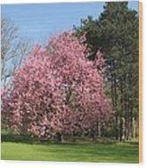 Cherry Tree Wood Print