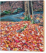 Chesterfield Gorge New Hampshire Wood Print