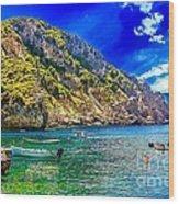 Cliffside Coastline On Corfu Wood Print