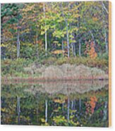 Crawford Notch State Park - White Mountains New Hampshire Usa Wood Print