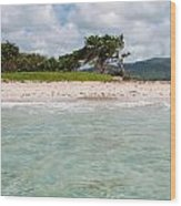 Deserted Beach At Vieux Fort Wood Print