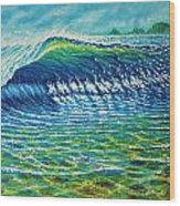 Dolphin Surf Wood Print