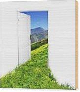 Door To New World Wood Print