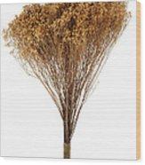 Dry Flowers Bunch Wood Print