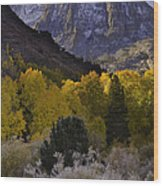 Eastern Sierras In Autumn Wood Print