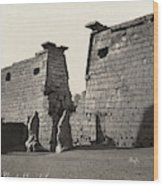 Egypt Luxor Temple Wood Print
