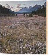 Engadine Meadow Wood Print