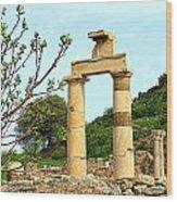 Ephesus Wood Print