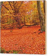 Epping Forest Hrd Version Wood Print