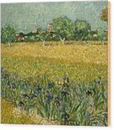 Field With Flowers Near Arles Wood Print