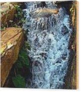Finlay Park Waterfall 2 Wood Print