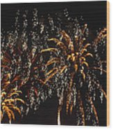 Fireworks Wood Print by Lester Phipps