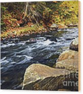 Forest River In The Fall Wood Print