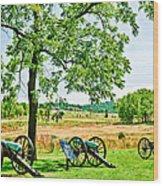 Gettysburg Battleground Wood Print