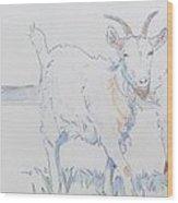 Goat Drawing Wood Print