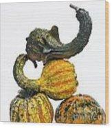 Gourds And Pumpkins Wood Print