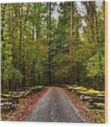 Great Smoky Mountains Wood Print by Janice Spivey
