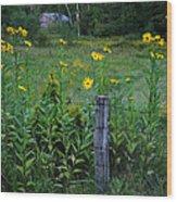 Green Acres Wood Print